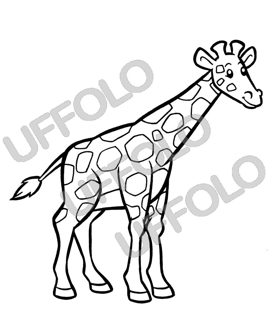 Disegni da stampare e colorare uffolo - Immagini di animali da stampare gratuitamente ...