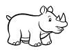 piccolo-rinoceronte-bianco-e-nero