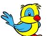 uccellino-colorato