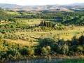 paesaggio-da-castelfalfi