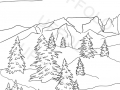 abeti-in-montagna