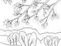 alberi-e-foglie-d'autunno-nel-paesaggio-boschivo