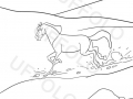 cavallo-fra-le-montagne