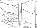 lupo-nel-bosco-innevato