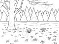 prato-e-alberi-autunnali