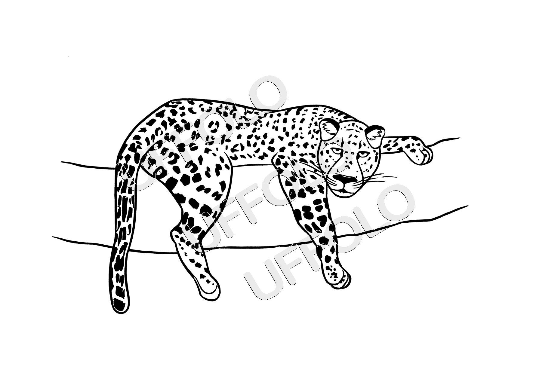 Disegni di animali africani uffolo for Disegni di animali per bambini