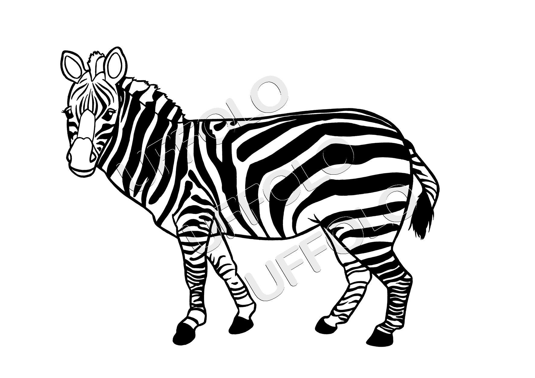 Disegni Di Animali Africani Uffolo