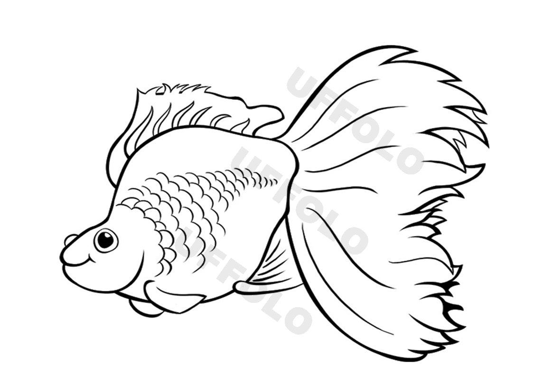 Coloriamo i pesci uffolo for Immagini di mare da colorare