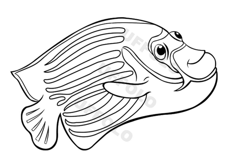 Coloriamo I Pesci Uffolo