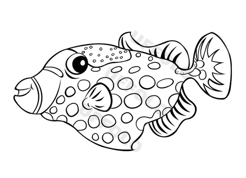 Coloriamo i pesci uffolo for Immagini pesciolini