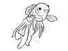 pesce-bianco-e-rosso