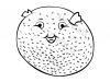 pesce-palla