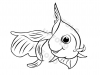 pesce-rosso-d'acqua-dolce