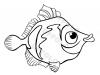 pesciolino-piccolo