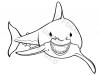 squalo-tigre