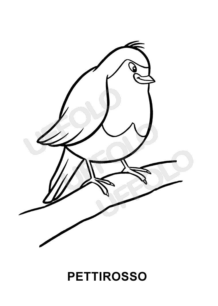 Disegni immagini da stampare e colorare uccelli