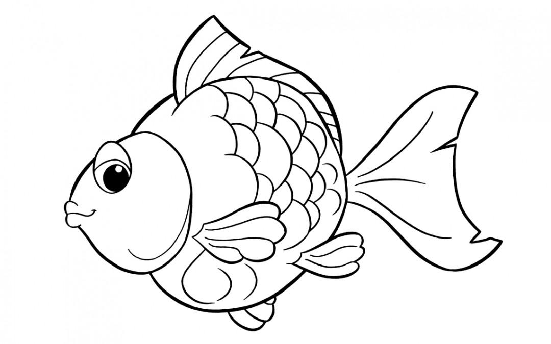 Conosciamo i pesci uffolo for Pesci immagini da colorare