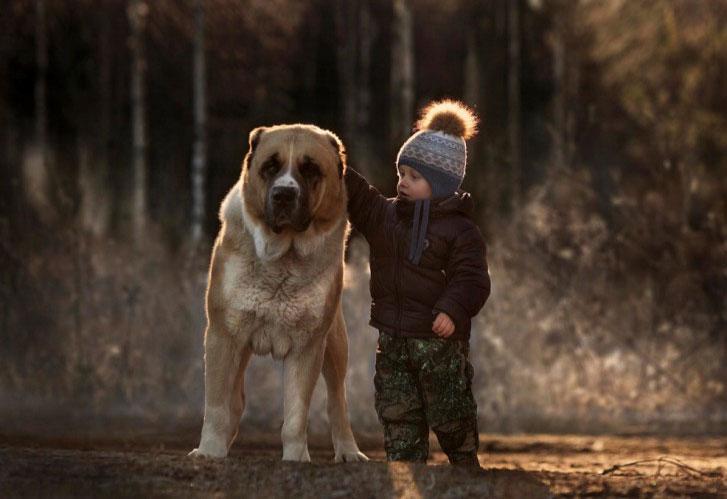 Giocare con gli animali